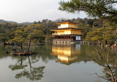 The gold -plated temple