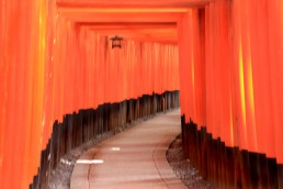 Fushimi-Inari - Taisha